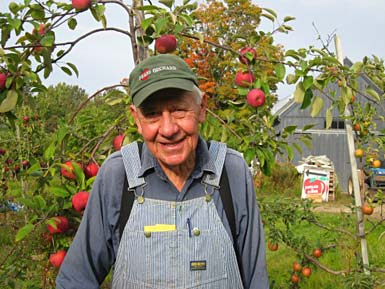 Second generation Bob Pease with ripe Ida Reds.